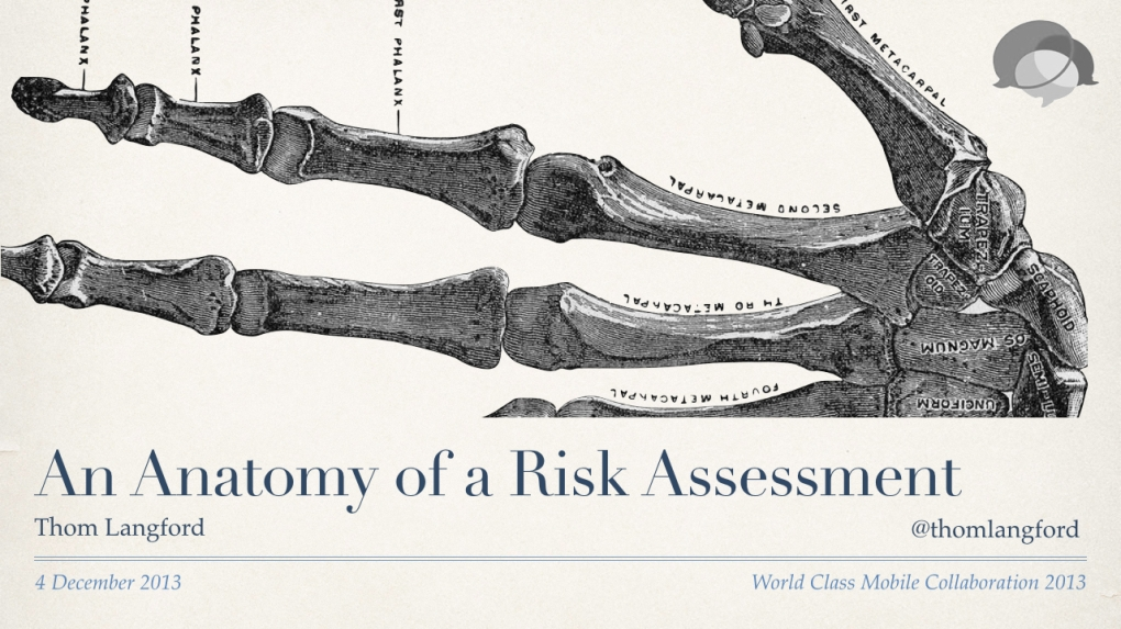 An Anatomy of a Risk Assessment